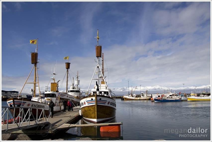iceland329